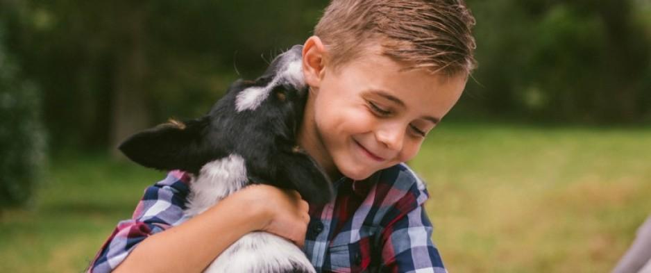 Allergies, obésité : comment le chien protège votre enfant