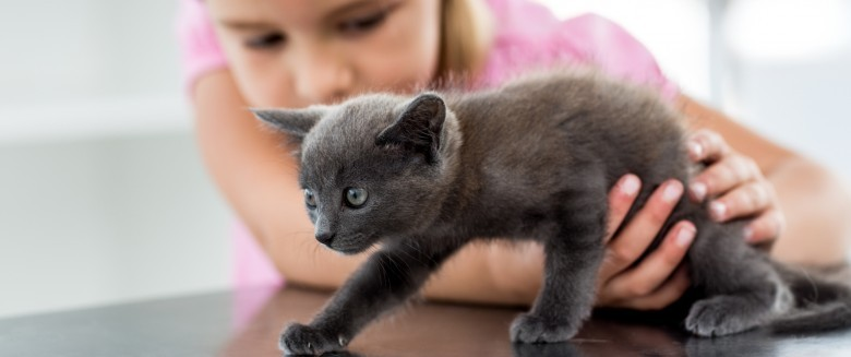 Quel animal  pour mon enfant ?