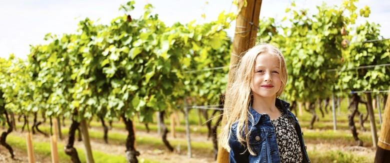 Pesticides : que risque-t-on quand on habite près d'un champ ou de vignes?