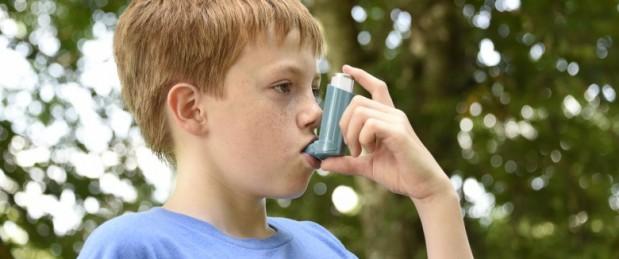 Dans l'enfance, l'asthme allergique touhe plus les garçons