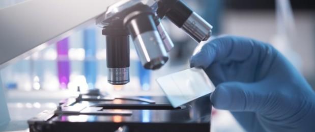 VIH : une nouvelle piste pour éliminer le virus