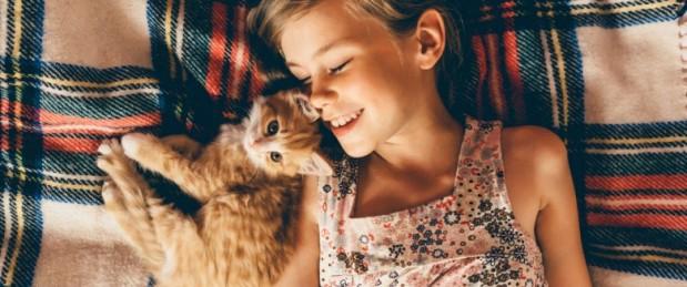 Journée internationale du chat : les solutions lorsqu'on est allergique