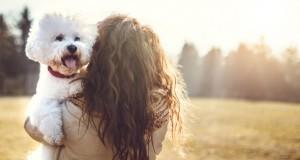 Pourquoi certaines personnes se soucient plus des chiens que des êtres humains ?