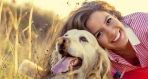Animaux de compagnie : les meilleures alliés anti-stress