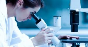 Des chercheurs chinois ont modifié génétiquement des embryons humains