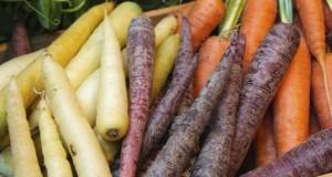 Les fruits et légumes, je les épluche ou non ?