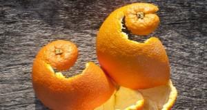 Comment réutiliser les pelures d'oranges ?