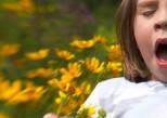 Augmentation des allergies respiratoires : le cri d'alarme des allergologues