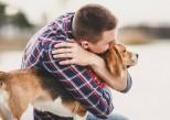 Contre le stress et l'ennui, les chiens et chats considérés comme des facteurs de bien-être