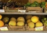 Intestin irritable : limiter les FODMAPs est plus efficace que manger sans gluten