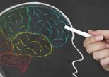 Comment fonctionne la mémoire de la peur ?