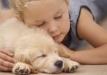 Santé : ces animaux qui nous font du bien