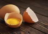 Santé : toutes les vertus des coquilles d'œufs
