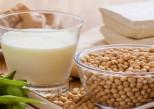 Le soja augmente-t-il ou prévient-il le risque de cancer du sein ?